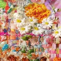 primavera_ Detail